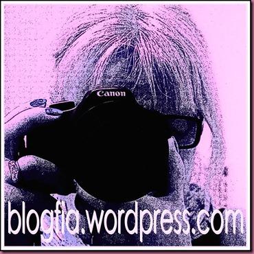 blogfia_20120705