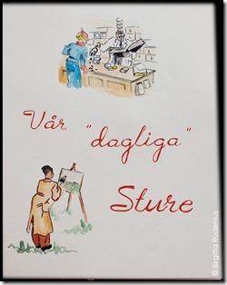 sture_20121018_30ar