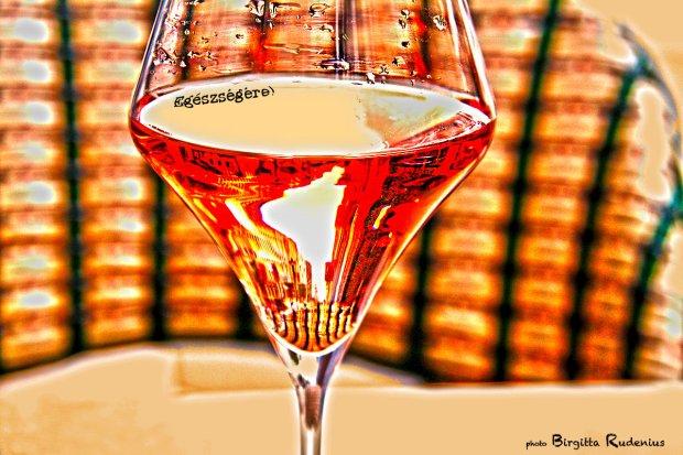 Skål! Egészségére! Cheers!