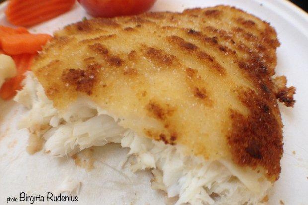 Nordsee fish