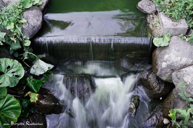 water_20130719_silke