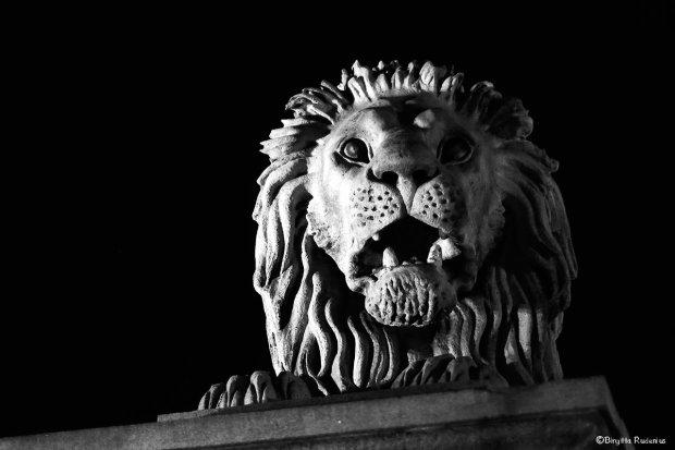 statue_20130827_lion