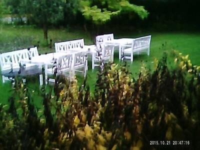 Klockbild - garden