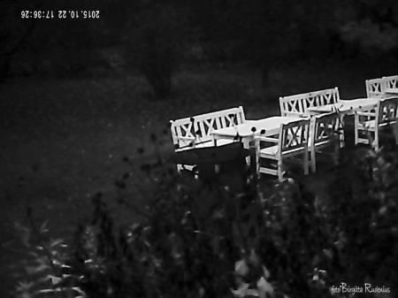 Klockbild - BW garden