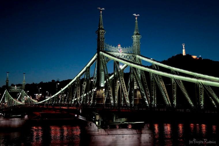 Liberty Bridge & Liberty Statue