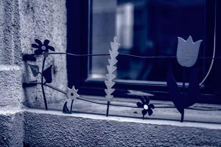 Blue Flowering Window