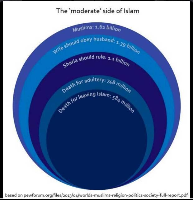Muslimer i världen anser att ....